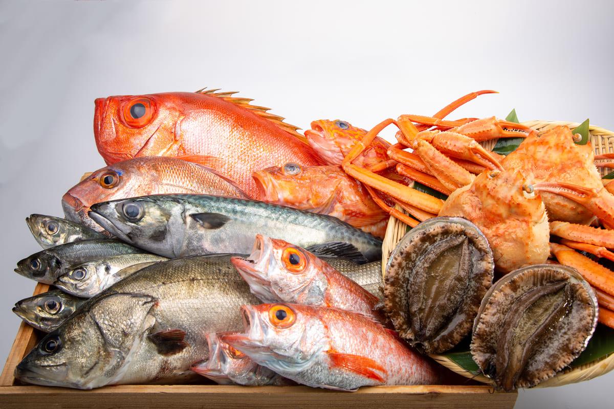 魚介・海産物のネットショップ開業に必要な資格・許可